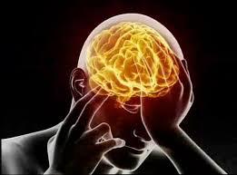 brain v